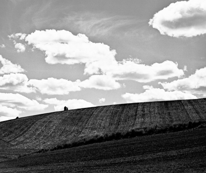 Palouse Fields 01 B&W